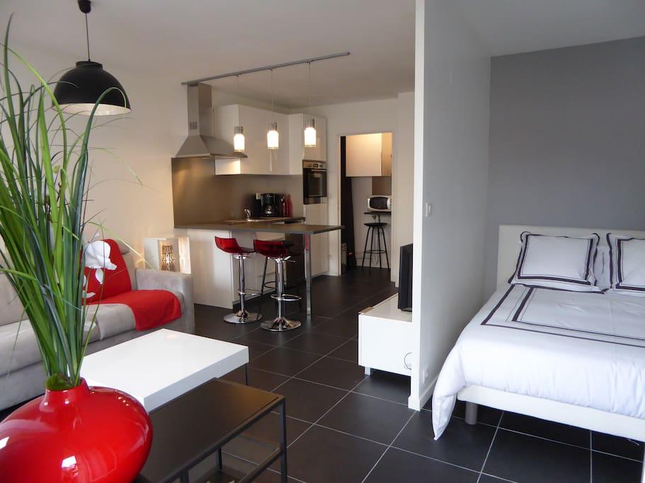 Tr s bel appartement t1 pkg appartements louer for Location appartement t1 bordeaux