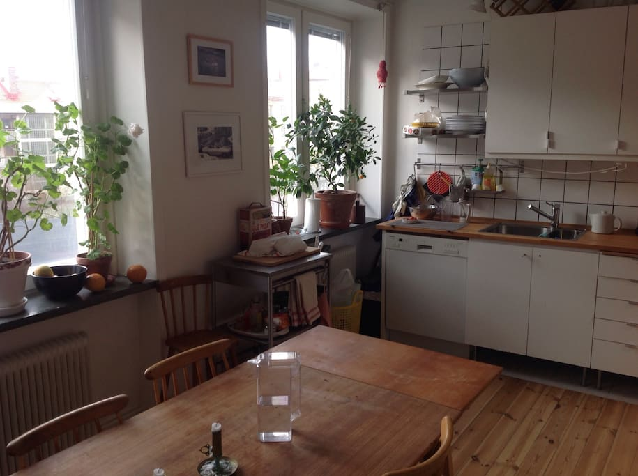 Kitchen with dishwasher and dining table for up to 8 people.