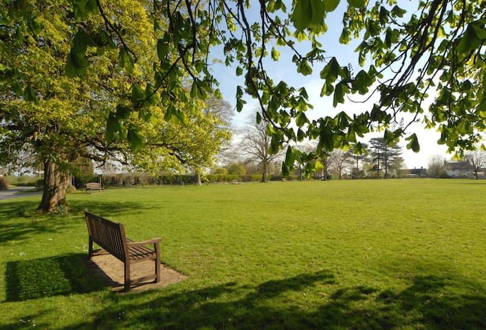 The delightful village green, opposite The Old Smithy