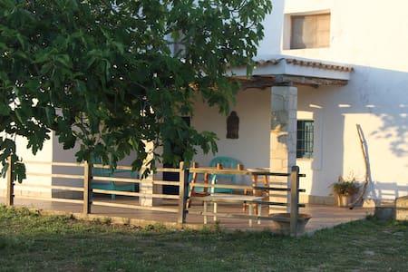 Amazing appartment in Ibiza finca - Sant Joan de Labritja