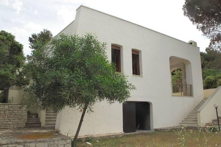 Villa Ofride Torre Vado