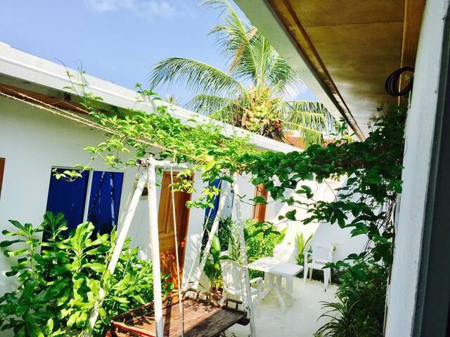 Reyva Inn Maafushi  - Affordable Rooms Rooms