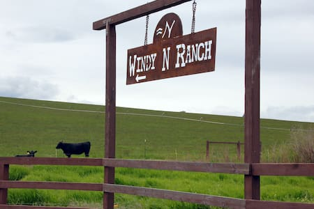 Stay in our studio on our ranch - Ellensburg - กระท่อม