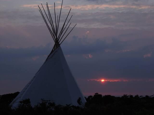 Vildmarksboende Bisonfarmen i Gate - Hjo - Kızılderili Çadırı