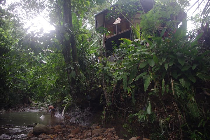 Secluded Chalet - riverside forest