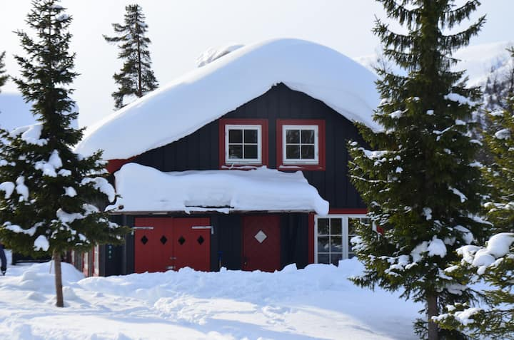 Koselig familiehytte med ski in/out!