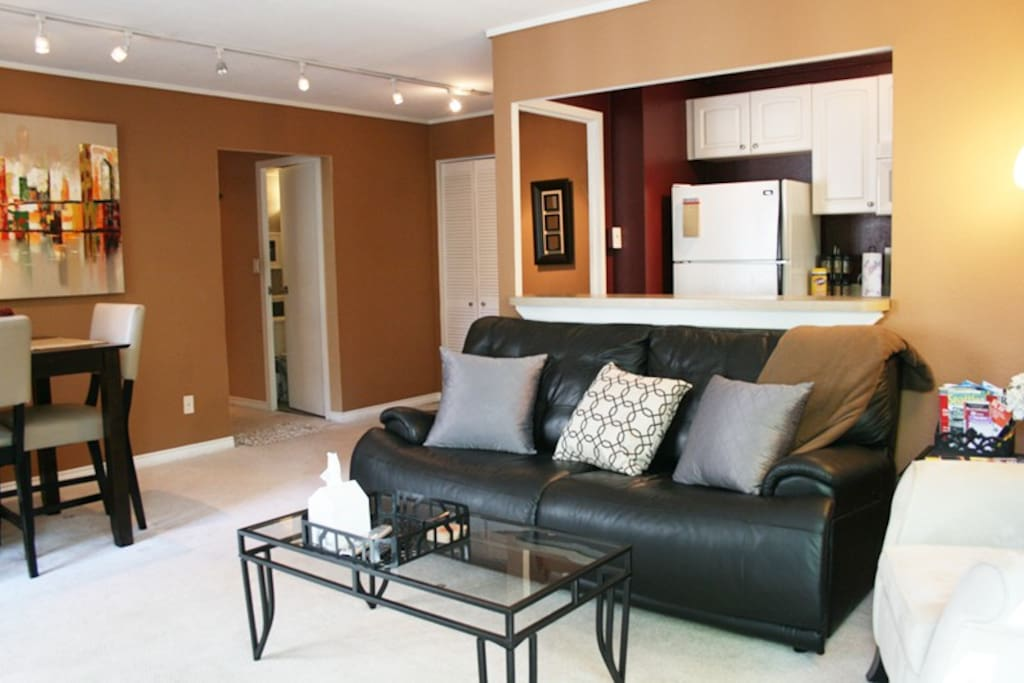 Gorgeous Downtown/Convention Condo
