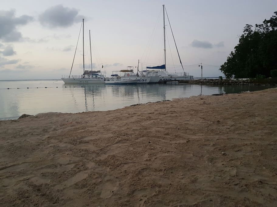 Cruises from your beach