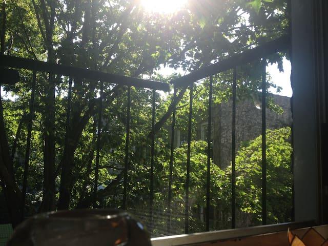 peaceful tree view room in sweet neighborhood
