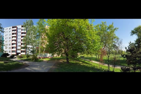 Apartment 30m2 with the balcony  and big city park just in front of the house. There is a small grocery shop under the house and nice restaurant near the house. In the Park Area, there is a Wellness center and big swimming pool.