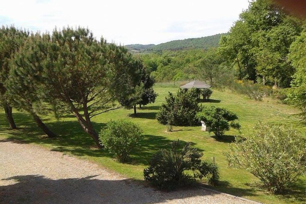 Large Garden.