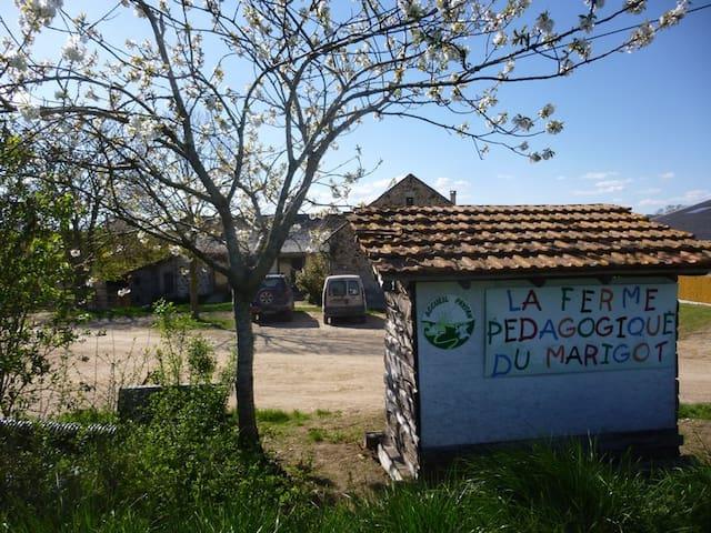 maison mitoyenne à la ferme pédago - La Fouillade - Casa