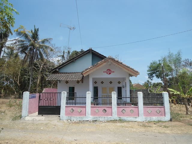 Cheap guesthouse osingvacation