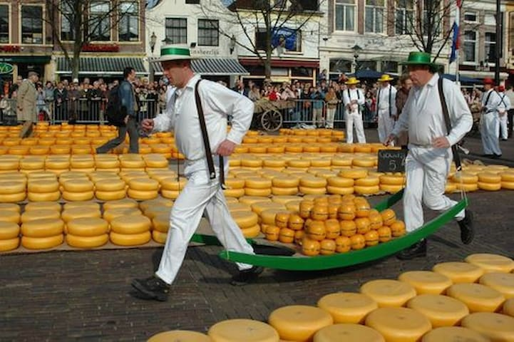 Every Friday Cheese Market in Alkmaar during the Summer period