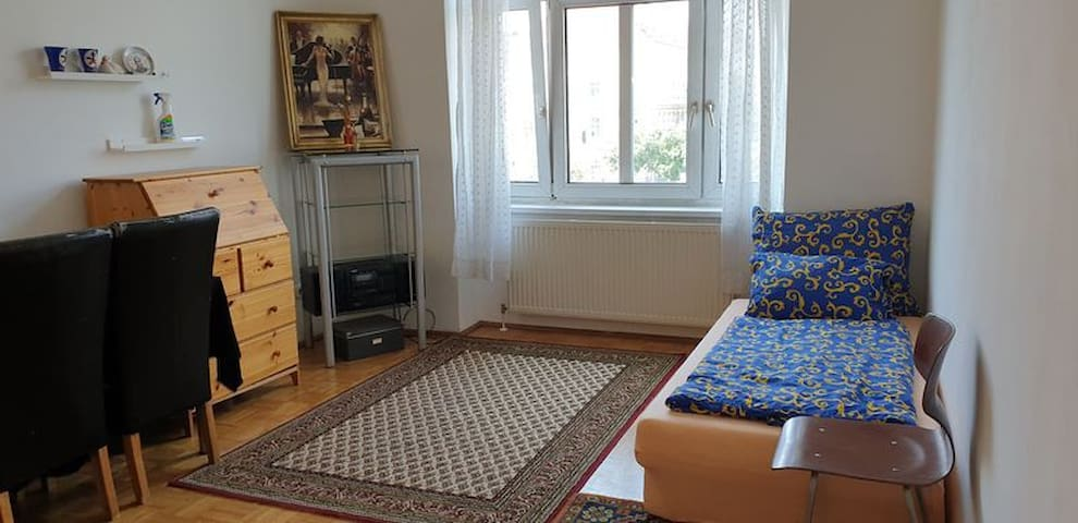 Enjoy my ENTIRE Apartment in the CENTER of Vienna!