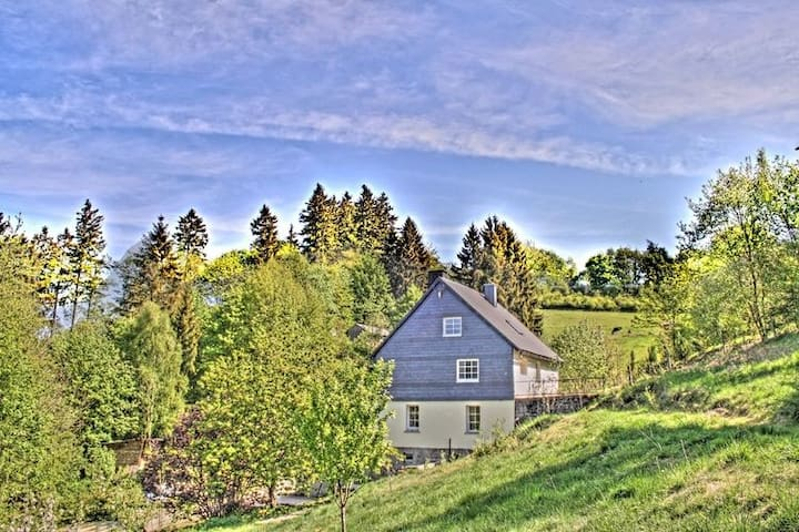 Pretty Holiday Home in Willingen near Forest
