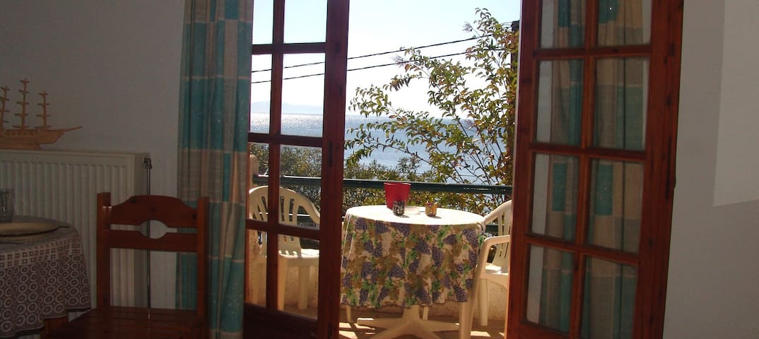 Sea side apartment with amazing view 1 - Sipiada - Apartment
