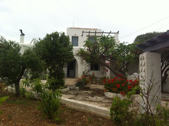 Paros, living in the residence of a painter - Drios - Villa