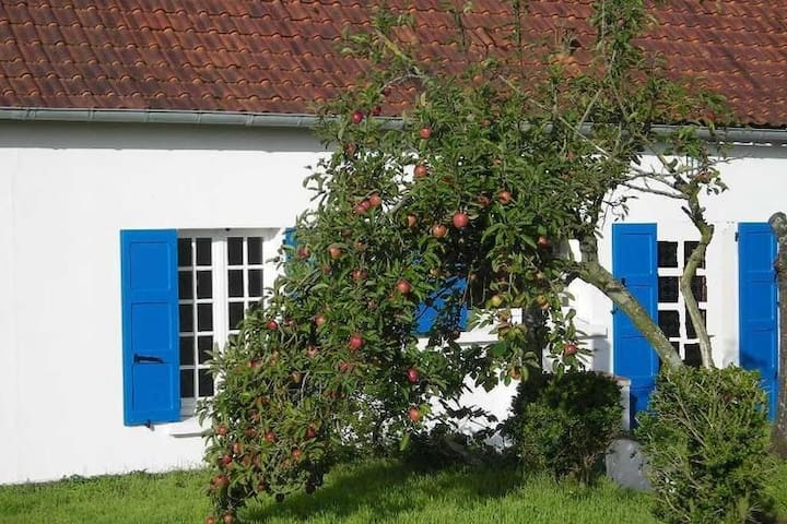 Cozy Cottage with Private Garden near Sea in Le Crotoy
