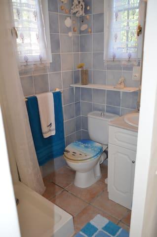 la salle d'eau toute en bleu