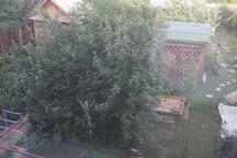 garden view 2016