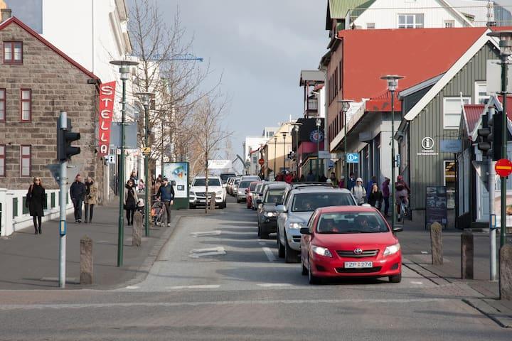 Oasis of Reykjavík center.