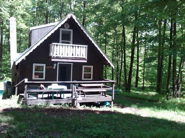 Catskills Mountain top Lake House - Parksville