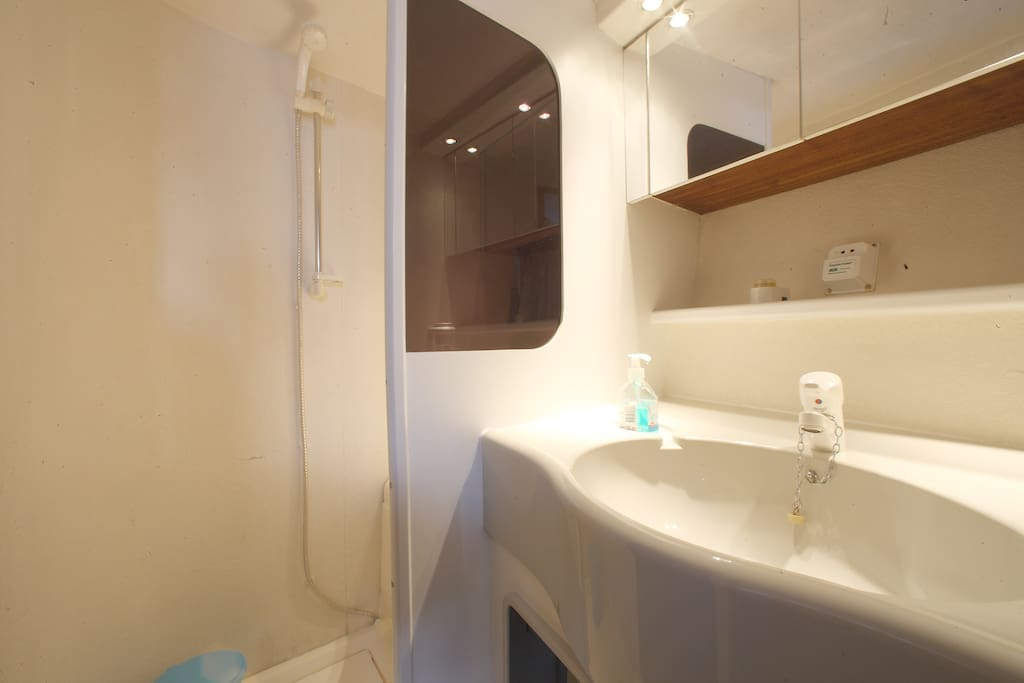 Suite WC with shower