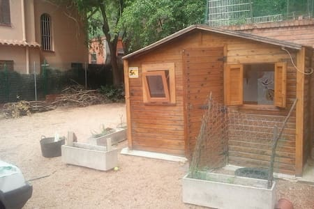Room type: Private room Bed type: Real Bed Property type: Cabin Accommodates: 1 Bedrooms: 1 Bathrooms: 1