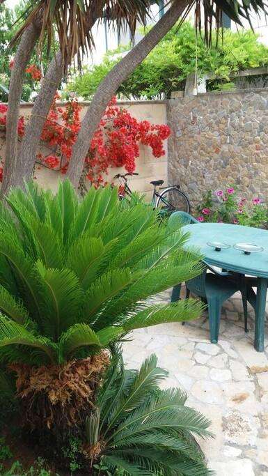 Il piccolo, ma caratteristico giardino posteriore