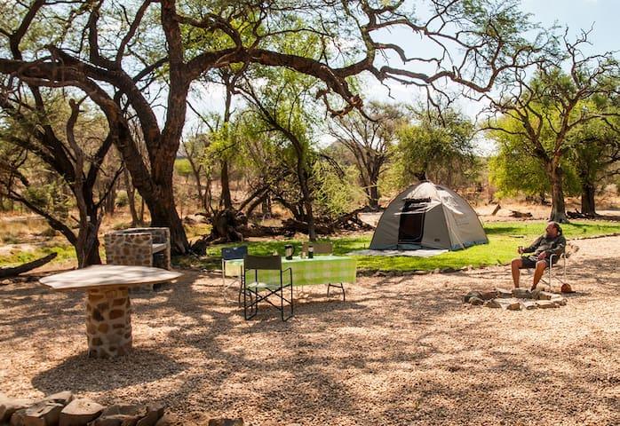 Campsite: Enjoy nature close to WHK @montechristo