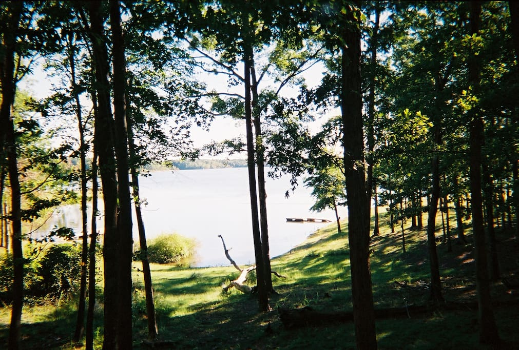 View from House and Deck