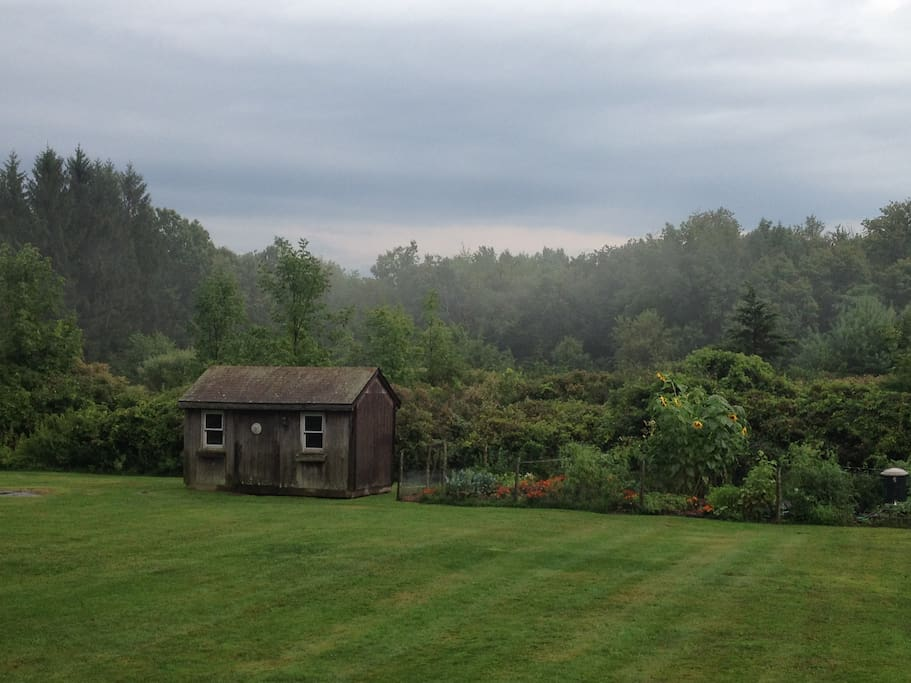View of the vegetable garden and shed from the rear deck