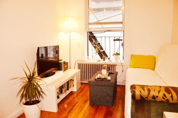 Cozy apartment in Greenpoint