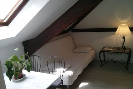 Charming studio near nature & PARIS - Brunoy