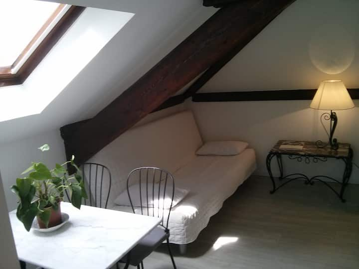 Studio de charme: NATURE + PARIS