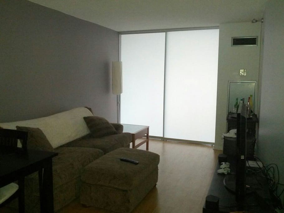 Shared living room with 50 inch TV, Bose Sound System and comfortble couch.