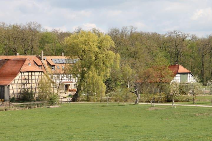 Waldhof Iphofen - FeWo Speckfeld - Iphofen - Apartment