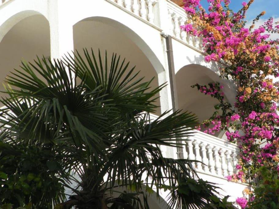 Vila Lida