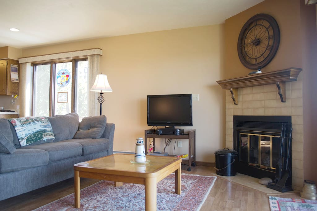 Wood burning fireplace and wood is supplied