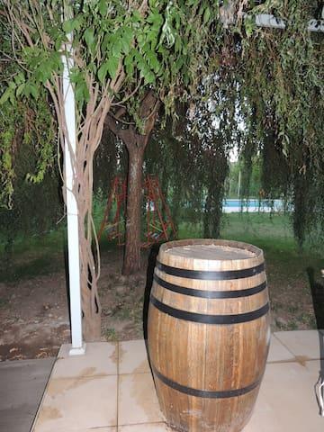 Santa Elena entre los caminos del vino