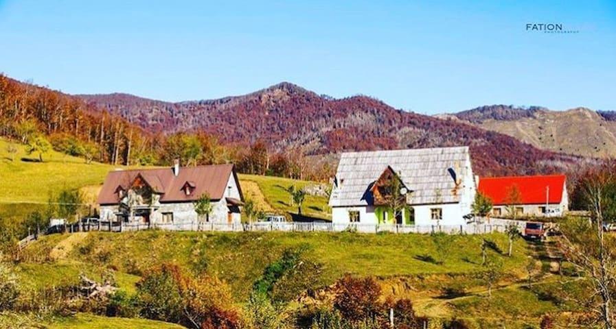 Guest house alpini