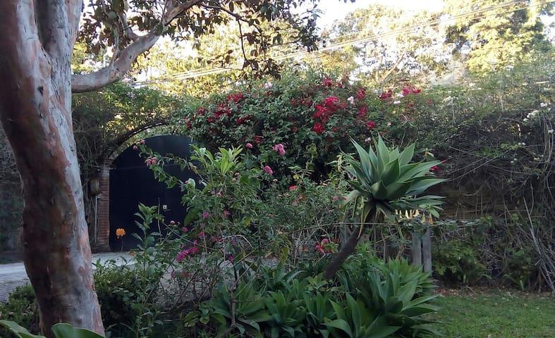 La Ceiba. Cozy, scenic room in Magical Tepoztlan