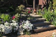 Gardens and Eating pergola