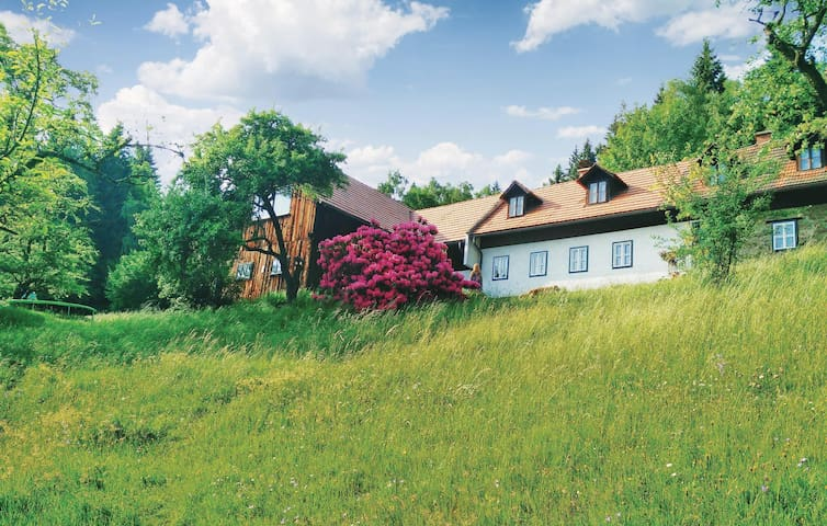 Holiday cottage with 4 bedrooms on 204m² in Miesenbach