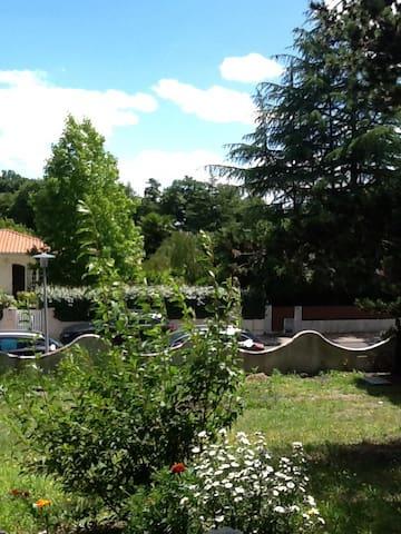 Maison balma - Balma - Appartement