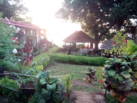 HOTEL  LE SULTAN  MOYA  COMORES