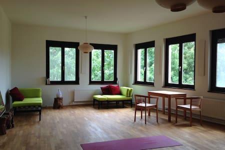 einzimmer/küche/bad  77m2;  grün - Zurndorf