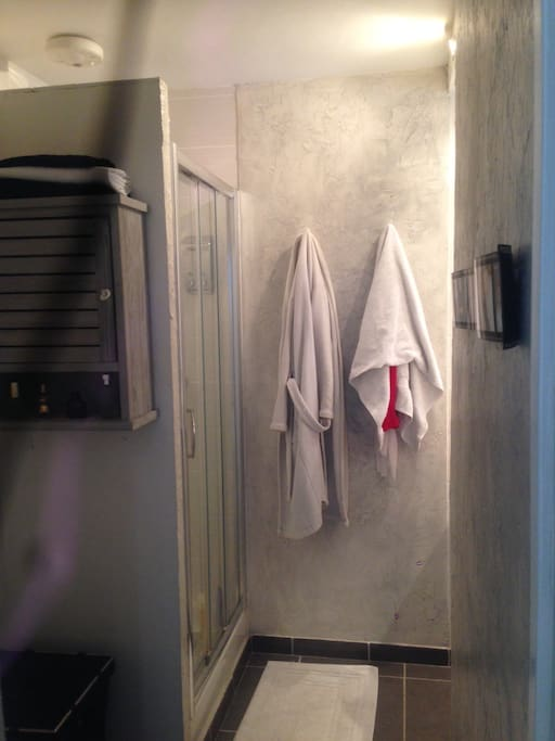 Douche (distributeur gel et shampoing plein) avec radio, vasque, rangement et wc (serviettes fournies).