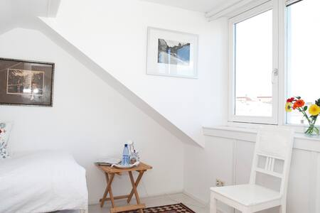 Sleep in the attic in Haarlem! - Haarlem - Bed & Breakfast